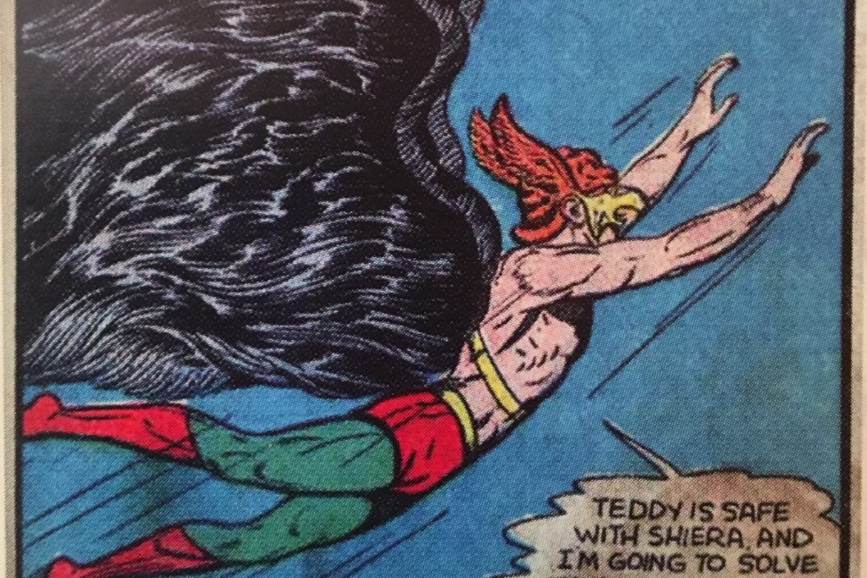 Hawkman History 101