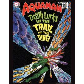 Aquaman 41 11x14 Print