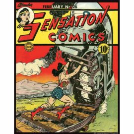 Sensation Comics 26 11x14 Print